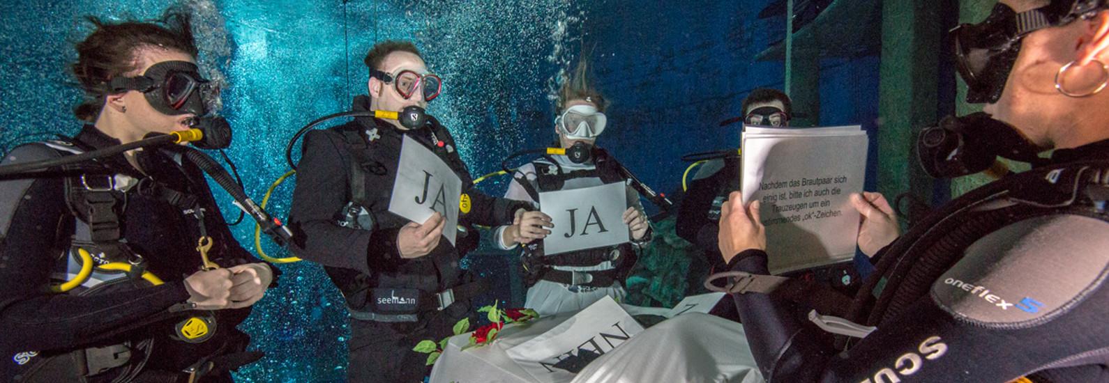 hochzeit-unterwasser